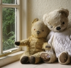 Teddy bears, other plush 'sleep over' at library