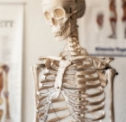 Kinesphere offers Bone Health classes