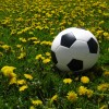 Soccer club readies for summer program