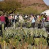 Fall plant sale at botanical garden