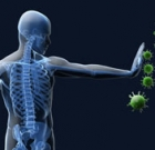Immune system can detect cancer
