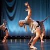 A showcase of choreographers