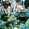 Learn about upcoming nature programs