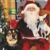 Get your pet's photo with Santa