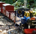 Model train members hold open houses