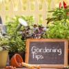 Month-by-month gardening tips