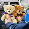 Officer gathers plush animals to hand out