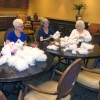 Stuffed pets bring 'Sunshine' to seniors