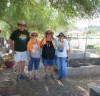 Garden plots now available to public