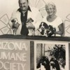 'Pets on Parade' marks 60th anniversary