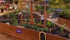 Museum cooks up kitchen, garden classes for kids