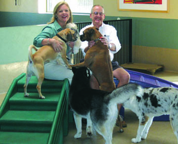 Cheryl and Roger Naumann, lifetime animal lovers and owners of the Second Home Pet Resort, visit with some of the dogs participating in the facility's drop-off daycare program (photo by Teri Carnicelli).