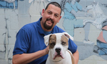 The Arizona Humane Society's Rick Gonzales has assumed the role of head trainer for the nonprofit's new public dog training classes. Gonzales has worked with shelter dogs for years, including Hodor, a boxer who is now with a forever family in Peoria (submitted photo).