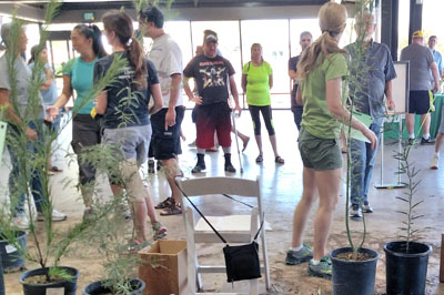 One of Valley Permaculture Alliance's more popular programs, the Shade Tree Giveaway, will continue on under the organization's new name, Trees Matter (submitted photo).