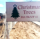 Boy Scouts selling holiday trees
