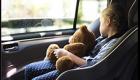 Take steps to keep kids, pets safe from heatstroke