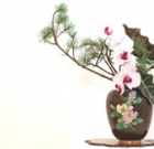 Ikebana Exhibit returns to Ro Ho En