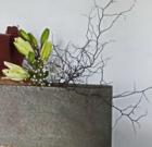 Ikebana Exhibit Jan. 26-28 at garden