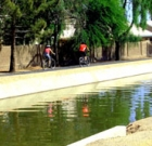 Discussion, bike tour of Arizona Canal
