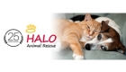 HALO Animal Rescue receives honor