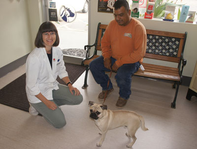 Dr. Hillary Frank, owner of North Central Animal Hospital, visits with Rafael Aboite and his 1½ -year-old pug mix, Chester, who was in for his booster shots (photo by Teri Carnicelli).